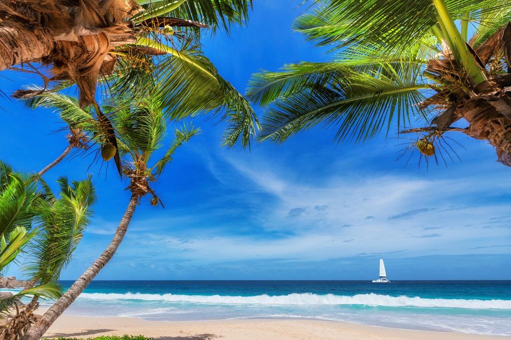 Jamaica Paradise island. by Tripps Plus Las Vegeas