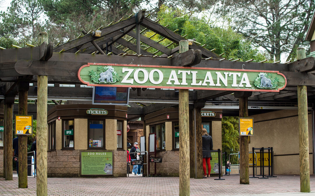 Booking Express Travel Suggests Family Vacationers Visit The Atlanta Zoo